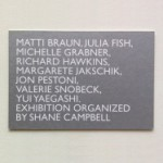 Exhibition organized by Shane Campbell